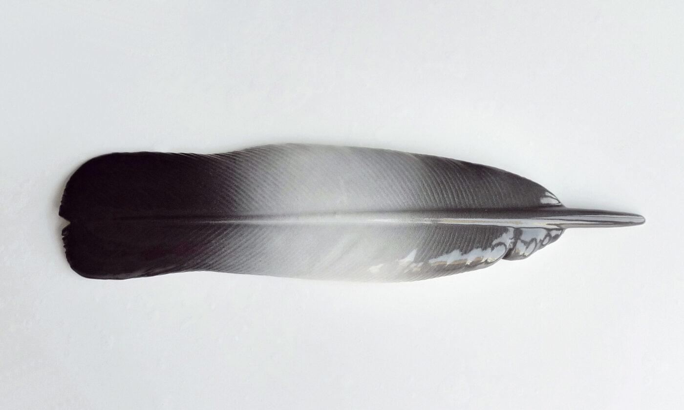 Keramiker Marianne Nielsen - Duefjer, 2010